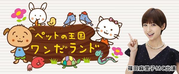 ABC朝日放送 新番組「ペットの王国 ワンだランド」
